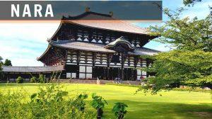 qué ver y qué hacer en Nara