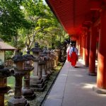 Monjes en el Parque Nacional de Nara